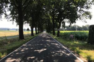 Straßenverlauf in Richtung Cloppenburg